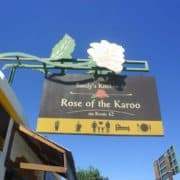 Rose of the Karoo Route 62