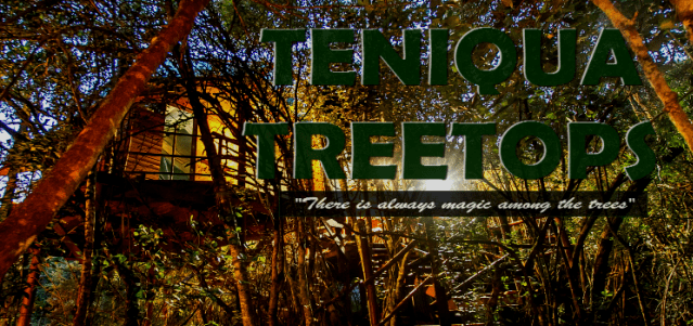 Teniqua Treetops Tented Tree House Resort