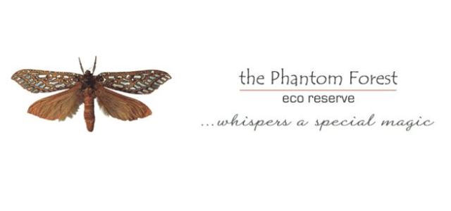 The Phantom Forest Eco Reserve