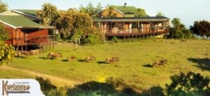 Kwelanga Country Retreat