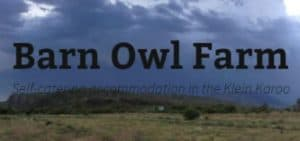 Barn Owl Farm