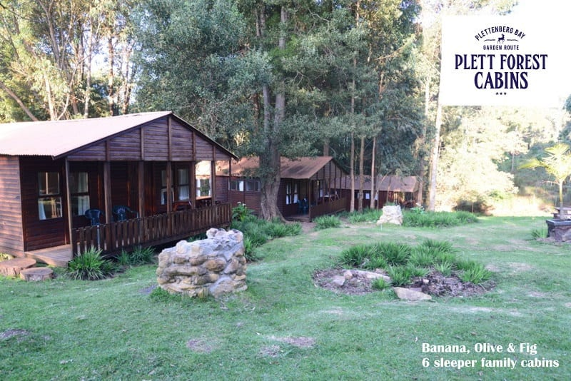 Plett Forest Self Catering Cabins