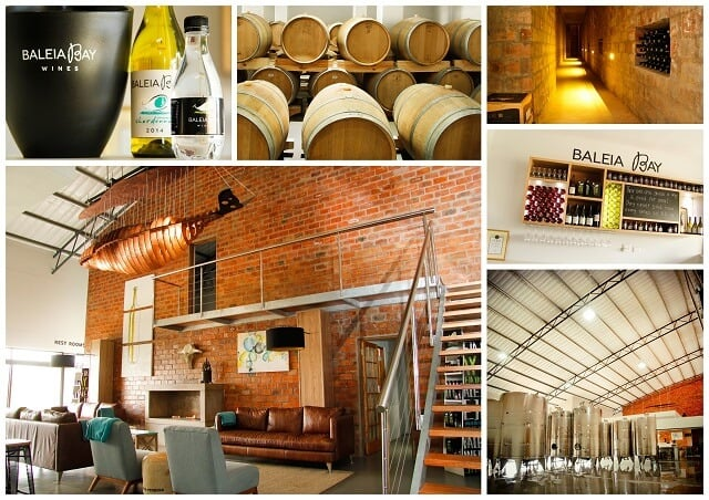 Baleia Bay Wines