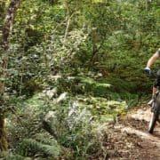 Garden Route Trail Park