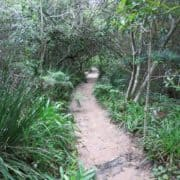 Pledge Nature Reserve