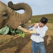 Experience Mossel Bay Indalu Game Reserve Mossel Bay