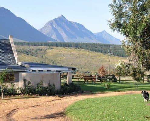 Oudebosch Guest Farm