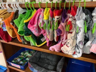Wags & Whiskers Pet Clothing in Stilbaai