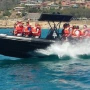 Experience Mossel Bay Freaking Fast Wave Rider