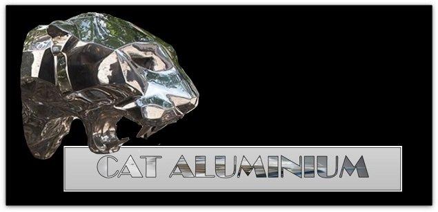Cat Glass & Aluminium